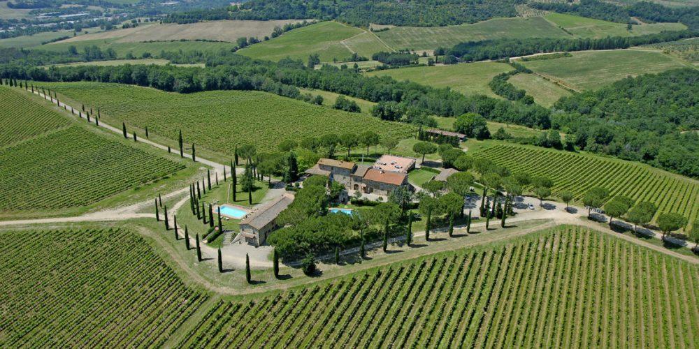 Pratale w vineyards